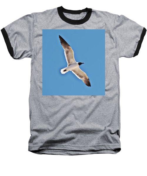 Seagull In Flight Baseball T-Shirt by Gina O'Brien