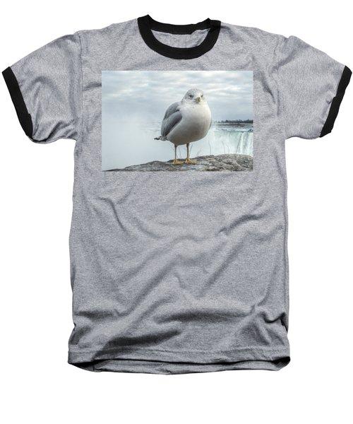 Seagull Model Baseball T-Shirt