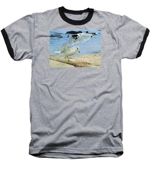 Seagull On The Beach Baseball T-Shirt by Nina Bradica