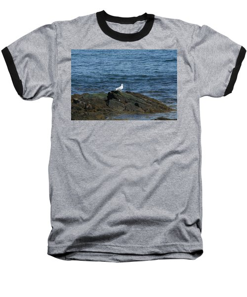 Baseball T-Shirt featuring the digital art Seagull On The Rocks by Barbara S Nickerson