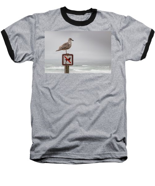 Seagull Standing On Sign And Looking At The Ocean Baseball T-Shirt