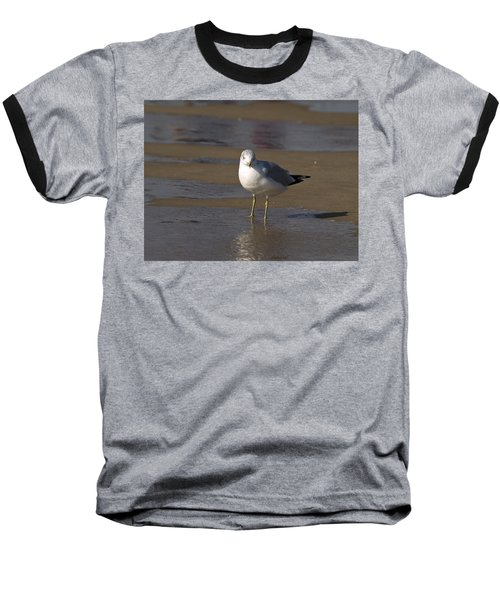 Seagull Standing Baseball T-Shirt