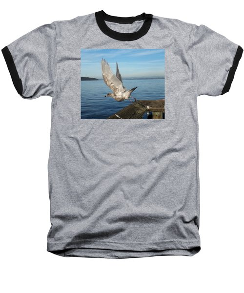 Seagull Taking Off Baseball T-Shirt