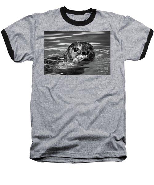 Seal In Water Baseball T-Shirt
