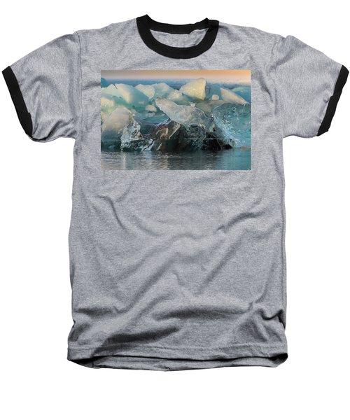 Seal Nature Sculpture Baseball T-Shirt