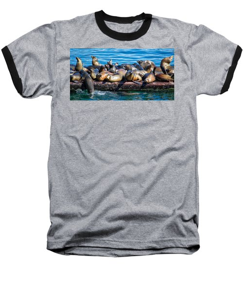 Sealions On A Floating Dock Another View Baseball T-Shirt