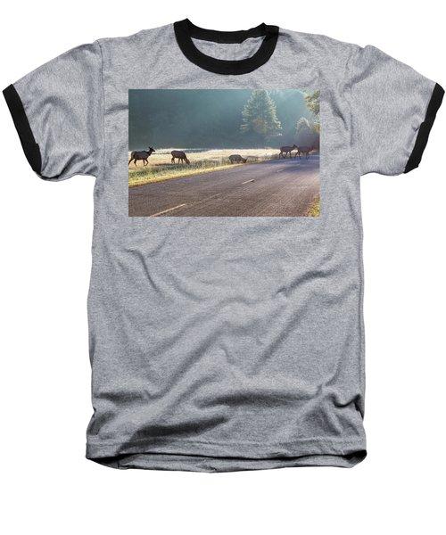 Searching For Greener Grass Baseball T-Shirt