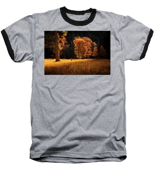 Searching For Light Baseball T-Shirt by Nicki Frates