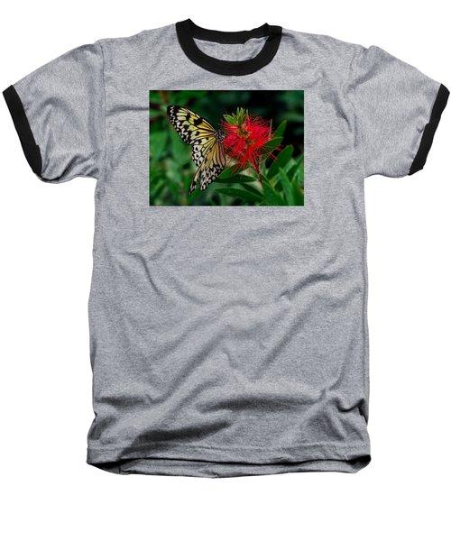 Searching For Nectar Baseball T-Shirt
