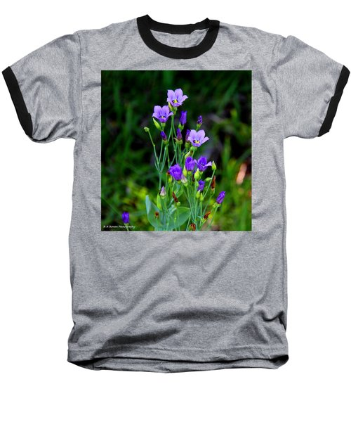 Seaside Gentian Wildflower  Baseball T-Shirt