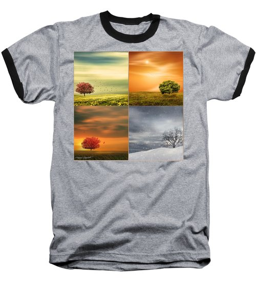 Seasons' Delight Baseball T-Shirt