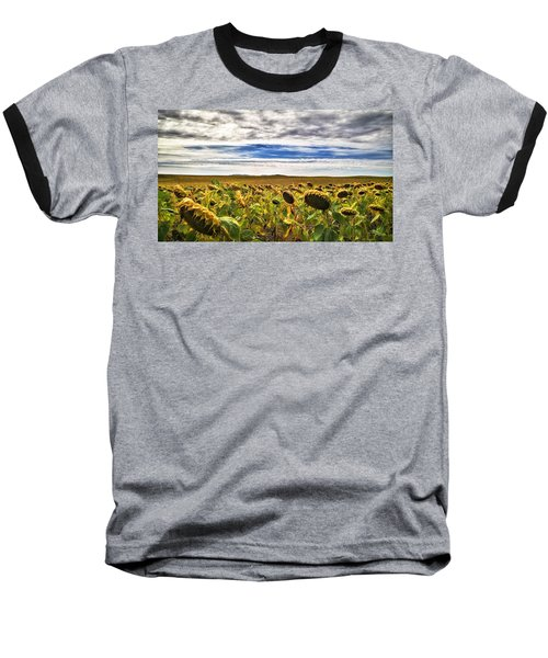 Seasons In The Sun Baseball T-Shirt
