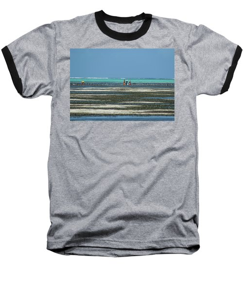 Seaweed Colectors Baseball T-Shirt