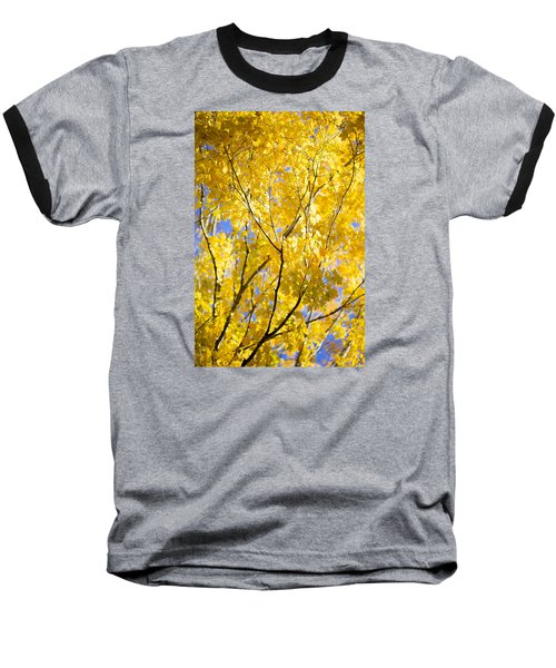 Second Spring Baseball T-Shirt