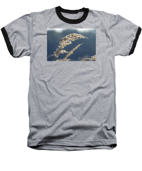Baseball T-Shirt featuring the photograph Sedge Grass by Odon Czintos