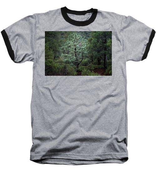 Sedona Tree #1 Baseball T-Shirt
