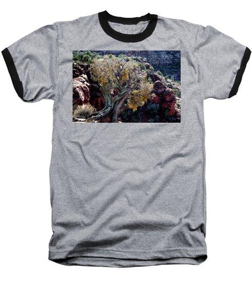 Sedona Tree #2 Baseball T-Shirt