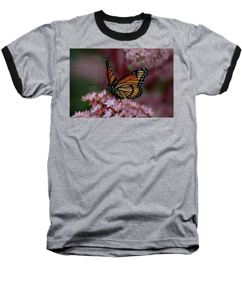 Sedum Butterfly Baseball T-Shirt