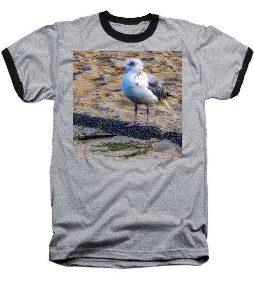 See The Gull Baseball T-Shirt