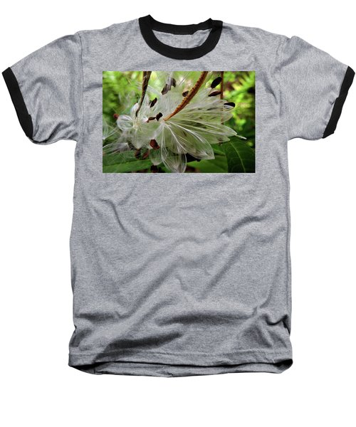 Seed Pods Baseball T-Shirt