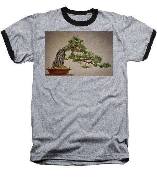 Semi-cascade Baseball T-Shirt by David Cote