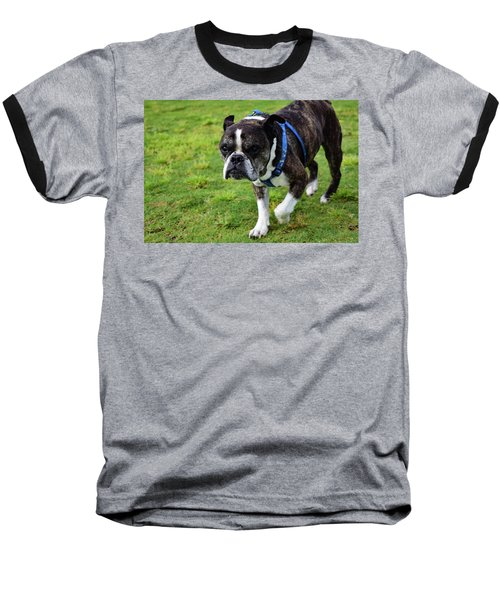 Leroy The Senior Bulldog Baseball T-Shirt