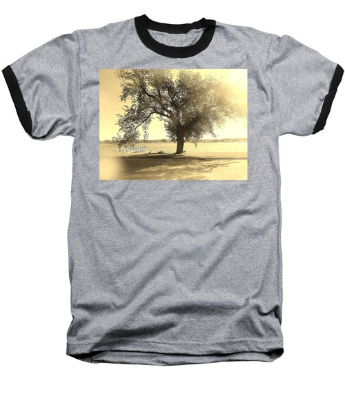Sepia Colors In A Tree Baseball T-Shirt