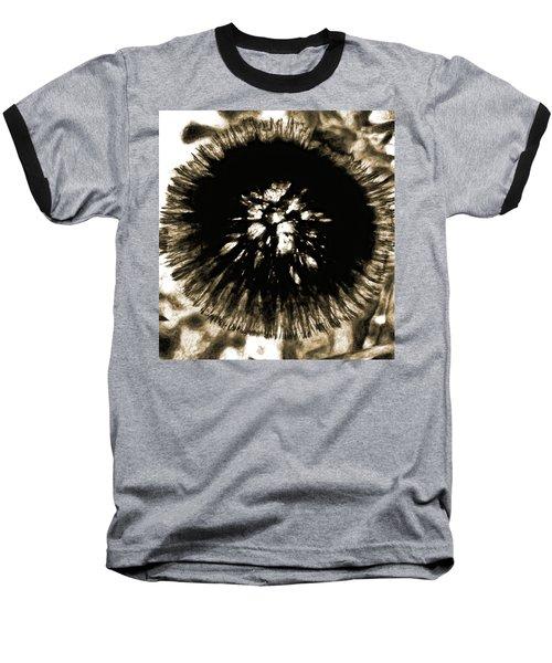 Sepia Dandelion Baseball T-Shirt