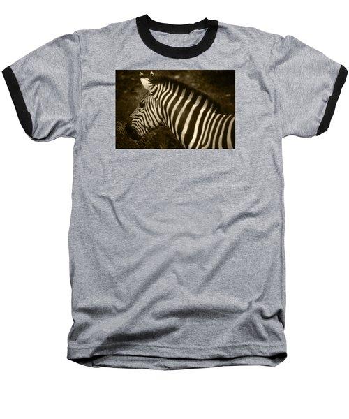 Sepia Zebra Baseball T-Shirt by Greg Slocum