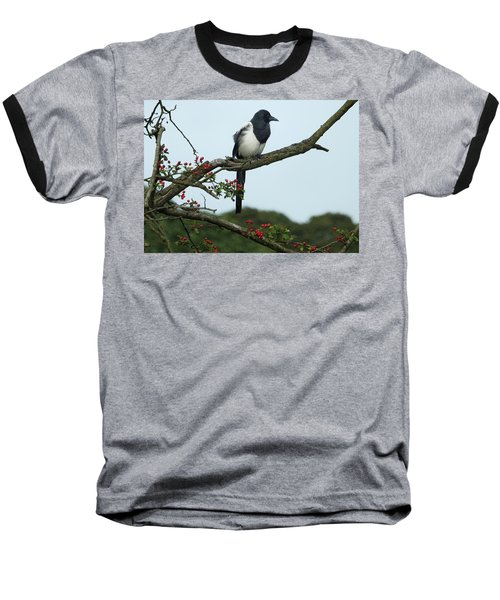 September Magpie Baseball T-Shirt by Philip Openshaw