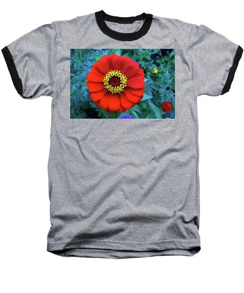 September Red Beauty Baseball T-Shirt