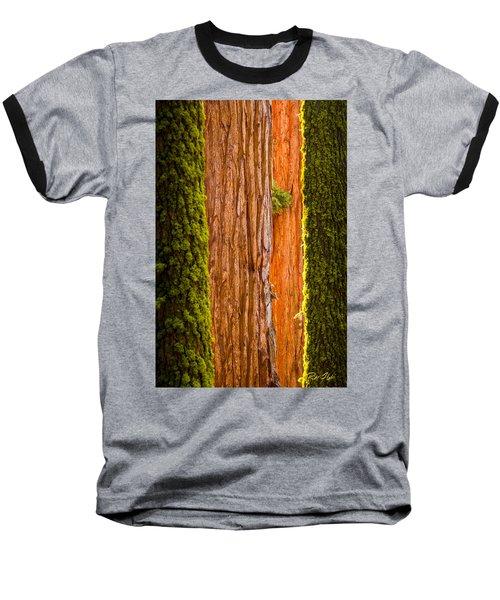 Sequoia Abstract Baseball T-Shirt