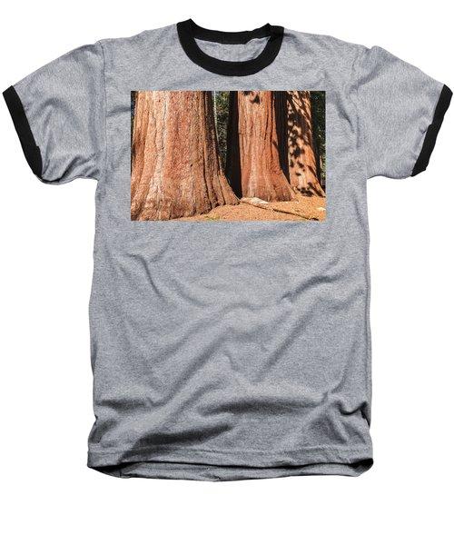 Sequoia Baseball T-Shirt