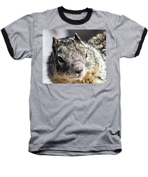 Serious Squirrel Baseball T-Shirt