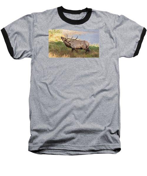 Seven Point Elk Bugling Baseball T-Shirt