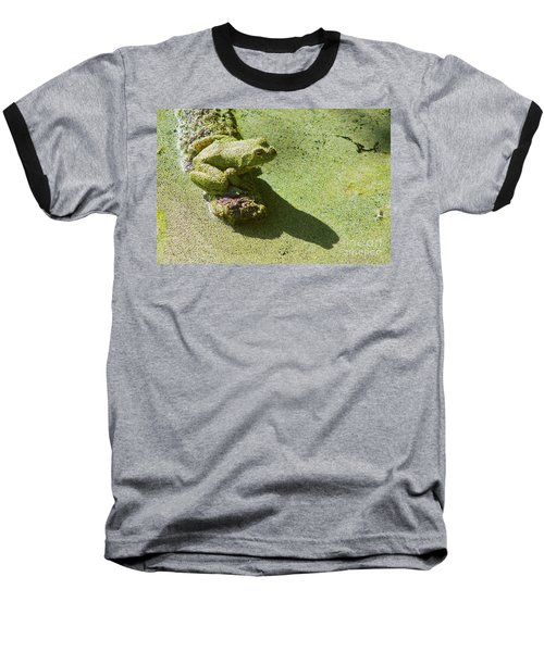 Shadow And Frog Baseball T-Shirt