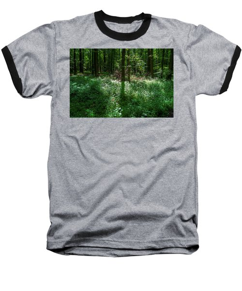 Shadow And Light In A Forest Baseball T-Shirt