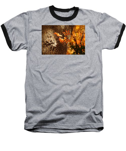 Fall Color Baseball T-Shirt by Tam Ryan