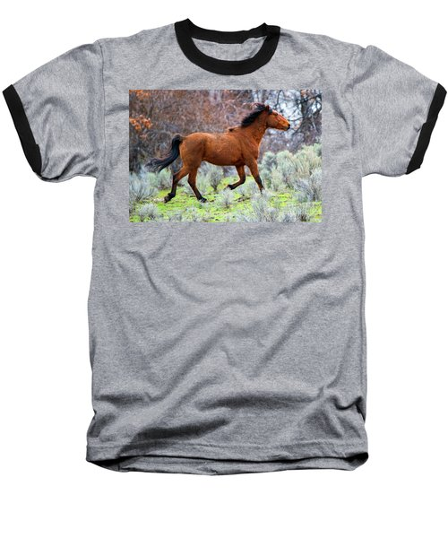 Baseball T-Shirt featuring the photograph Shaggy And Proud by Mike Dawson