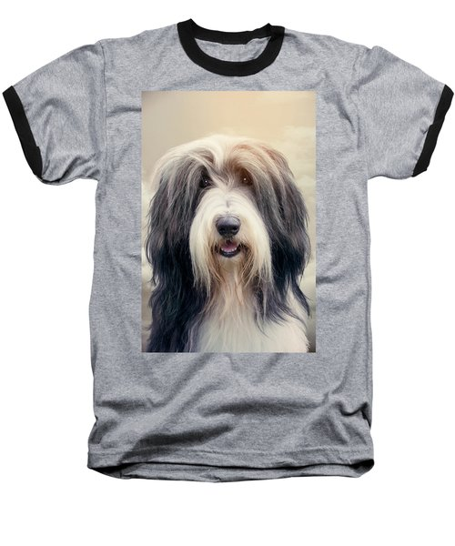 Shaggy Dog Baseball T-Shirt