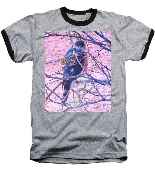 Sharp-shinned Hawk Hunting In The Desert 2 Baseball T-Shirt