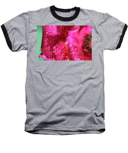 Sharp Wet Rose Baseball T-Shirt