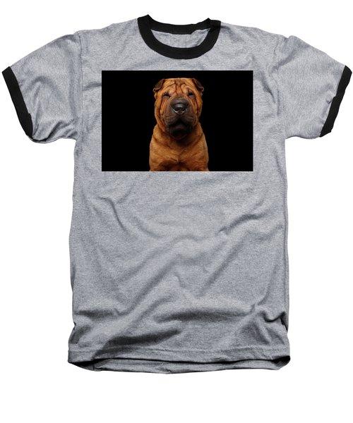 Sharpei Dog Isolated On Black Background Baseball T-Shirt by Sergey Taran