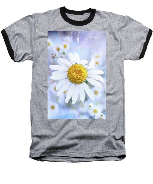 Shasta Daisy Baseball T-Shirt by Stephanie Frey