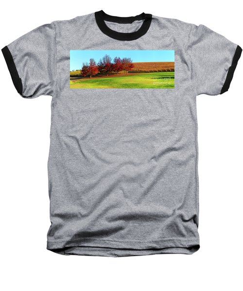 Shaw And Smith Winery Baseball T-Shirt by Bill Robinson