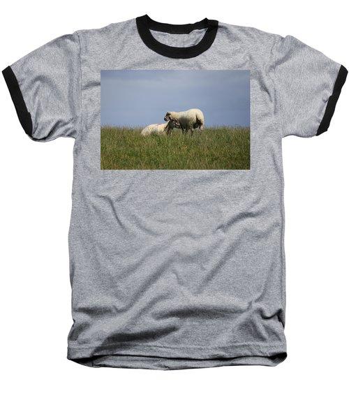Sheep 4221 Baseball T-Shirt