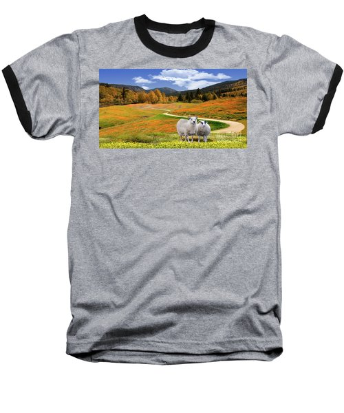 Sheep And Road Ver 3 Baseball T-Shirt