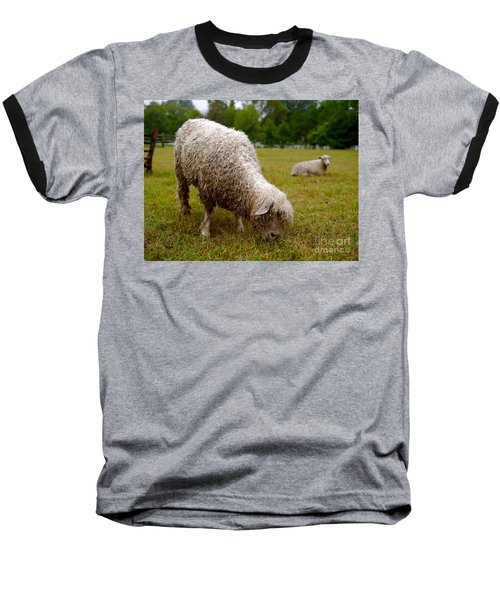 Sheep Begin A New Day Baseball T-Shirt