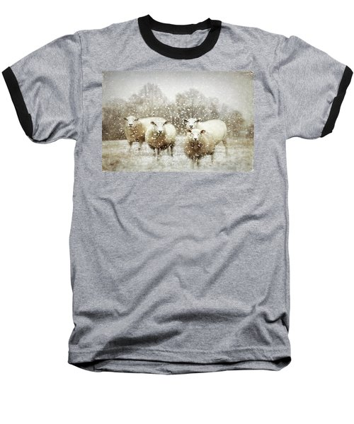 Baseball T-Shirt featuring the photograph Sheep Gathering In Snow by Bellesouth Studio