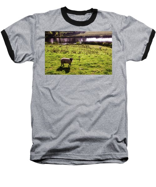 Sheep In Eniskillen Baseball T-Shirt